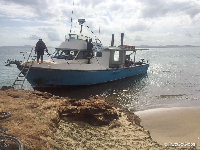Shamrock Charters, our ride across Kaipara Harbour