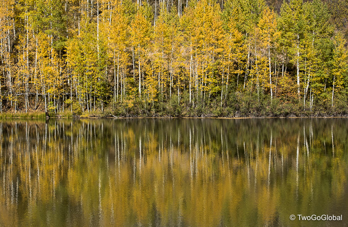 Time for some aspen reflection