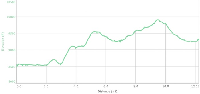 Day 15 elevation profile